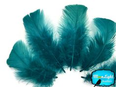 Pillow Feathers, 1 Pack - PEACOCK BLUE Turkey T-Base Plumage Feathers 0.5 oz. : 3880