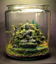 Ancient Buddha Zen Garden Terrarium Moss and Bonsai Diorama Mini Terrarium, Orchid Terrarium, Terrarium Wedding, Glass Terrarium, Air Plants, Indoor Plants, Indoor Herbs, Mini Jardin Zen, Deco Nature