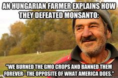 Hungary burned all their GMO corn fields when they found out they had been tricked into buying GMO seeds. Instead of risking it. They burned everything and wrote off the years crop. They are just one of the 30 countries that have already completely BANNED - GMO and dangerous Monsanto products
