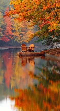 Beautiful fall colors by the lake All Nature, Beauty Of Nature, Autumn Nature, Nature Pics, Belle Photo, Pretty Pictures, Beautiful Nature Pictures, Amazing Pictures, The Great Outdoors