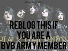 Im a Bvb army member