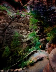 I shall always remember the pain from walking the Angels Landing Path within the Zion National Park. How To Use Photoshop, Photoshop Tutorial, Zion National Park, National Parks, Always Remember, Being Used, Landing, Climbing, Paths