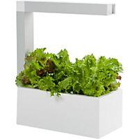 Dyrk frem egne urter og andre planter med en Herbie urtepotte. Potten legger til rette for optimale vekstforhold til en hver tid.