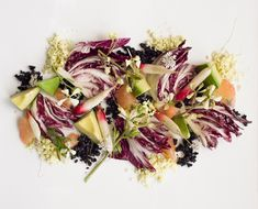 Read the new raw food recipes from Plant Food. Matthew Kenney pairs radicchio's richness with a healthy fats to create a symphony.