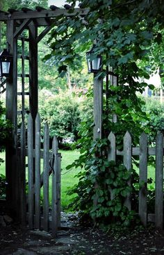 Beautiful weathered grey picket fence, gate and arbor...