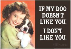 If My Dog Doesn't Like You I Don't Like You Funny Poster Prints at ...