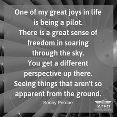 Flight Quotes, Aviation Quotes, Perspective, Pilot, Passion, Life