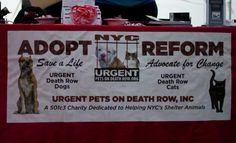 Highlight Video From Our Skechers GoWalk 2015 - http://urgentpodr.org/highlight-video-from-our-skechers-gowalk-2015/ …