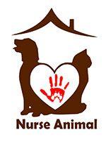 Nurse Animal | Services animaliers à votre domicile Decor, Cats, Animaux, Decoration, Decorating, Deco