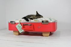 Upcycled Vintage Red Suitcase Pet Bed