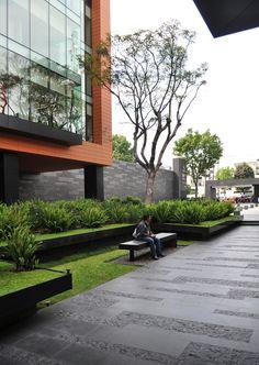 Galeria de Paisagismo no Campus Corporativo Coyoacán / DLC Arquitectos + Colonnier y Asociados - 26