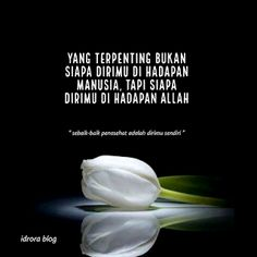 Reminder Quotes, Self Reminder, Daily Quotes, Best Quotes, Life Quotes, Muslim Quotes, Islamic Quotes, Quotations, Qoutes