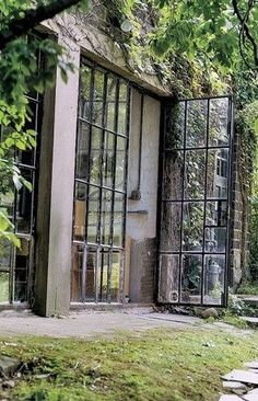 This is a perfect match - industrial windows and wild nature ...