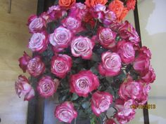 ONLY HIGH END ROSES, AVAILABLE AT SANTA MARIAS