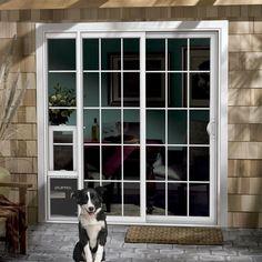 Jeld Wen Pre Hung Entry Door With Factory Built In Pet