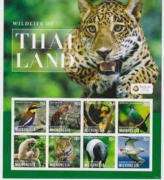 Micronesia - Wildlife of Thailand, 2013 - Sheetlet of 8 MNH
