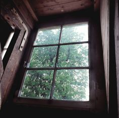 View of the chestnut tree from the attic in the Anne Frank House.