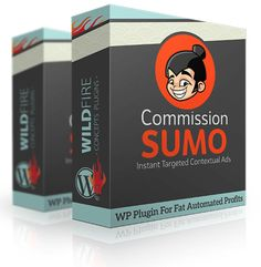 Commission Sumo by Cindy Donovan Review-WP Plugin For Fat Automated Profits. Instant Targeted Contextual Ads.