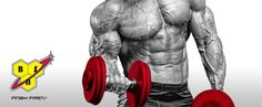 BSN Supplements at Bodybuilding.com: Best Prices for BSN Products!