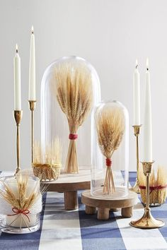 Wheat Cloches Group together pieces of wheat, wrap with a ribbon, and place under glass cloches. And if you want to elevate your centerpiece, stick 'em on cake stands of differing heights. #thanksgiving #centerpiece #table #easy #rustic