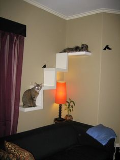 Cats Toys Ideas - Oooooh I like this! Id put the stairs part on the side wall next to my bed. And the one long shelf about the head of my bed and have fabric drape from underneath - Ideal toys for small cats Ikea Lack Shelves, Diy Cat Shelves, Book Shelves, Cat Hacks, Dog Steps, Ideal Toys, Cat Room, Small Cat, Cat Furniture