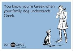 Growing up Greek American yes Alex has taught Maggie Greek! Greek Memes, Funny Greek, Greek Girl, Greek Easter, Funny Relatable Quotes, Greek Culture, Do Homework, Thug Life, Family Dogs