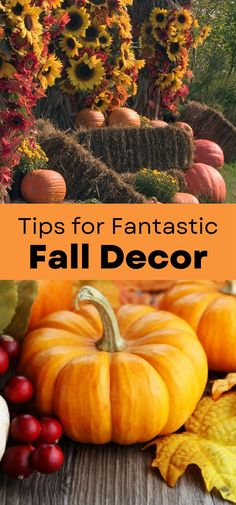 Here are some great tips for halloween and fall decor to help your outdoor space feel festive this autumn #fall #halloween Natural Fall Decor, Harvest Decorations, Natural Materials, Decorating Your Home, Pumpkin, Organic, Autumn Fall, Vegetables, Fall Halloween