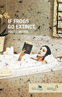 writing assessment frog unit: Public service announcement illustrating the ecosystem service values of frogs