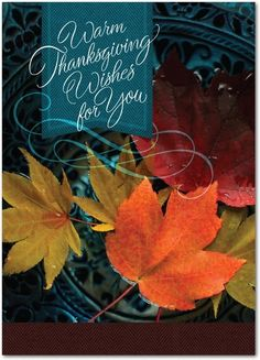 Wishing You Warmth - Happy Thanksgiving Greeting Cards from Treat.com