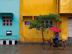 Solid-Faced Canvas Print Wall Art Print entitled Woman cycling in Pondicherry street with umbrella. Pondicherry India, Canvas Wall Art, Wall Art Prints, Umbrella Art, What A Beautiful World, City Painting, Street Photography, Holiday, Cycling Tours