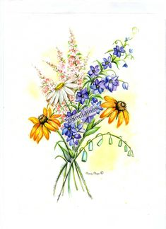 wildflower drawing - Google Search