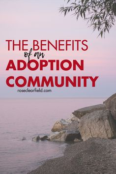Having a strong community of fellow adoptive parents is critical for navigating the world of adoption successfully and getting the support you need for your family! Open Adoption, Foster Care Adoption, Foster To Adopt, Moms' Night Out, International Adoption, Adoption Agencies, Foster Family, Adoptive Parents, Adoption Process