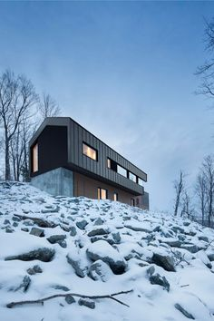 bolton residence - bolton east - naturehumaine - 2014 - photo adrien williams
