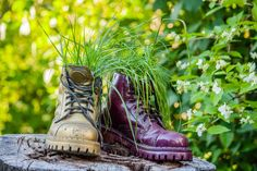 Wenn Sie eine künstlerischere Stück erstellen möchten, wählen Sie ein paar gebrauchte Schuhe, verwenden Sie als Pflanzer, sie mit leuchtenden Farben irre sprühen und dann sie auf einen Schnitt von Baumstamm zeigt.