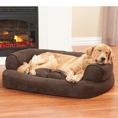 Overstuffed Luxury Sofa Combines Orthopedic Support Where Your Dog Lays With The Comforting Prop Of A Pillowed Edge