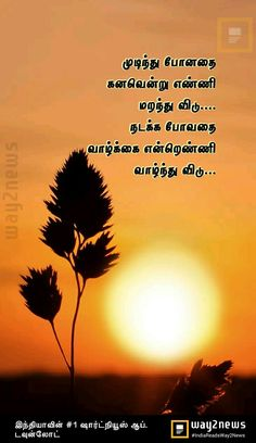 Beautiful Morning Pictures, Good Morning Quotes, Movies, Movie Posters, Films, Film Poster, Cinema, Movie, Film