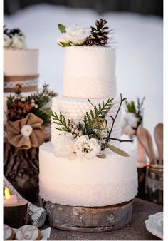 LOVE this textured winter wedding cake.  It appears to be part of dessert buffet with a deconstructed cake.