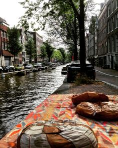 Best spot in the world. Beauty and calm in Amsterdam, Netherlands.