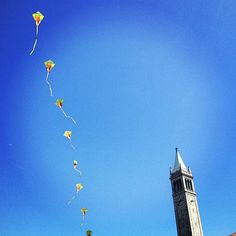 berkeley, epic kites.