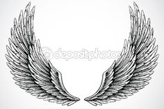 Vector Wings by Nathan Stitt - Stock Photo