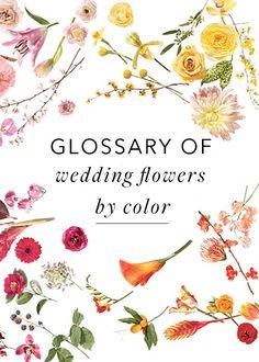 wedding flowers by color   via: brides