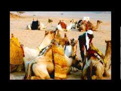 Viaggio di Laura a Sharm el Sheikh by Pagliarini Viaggi - creato da Eufr...
