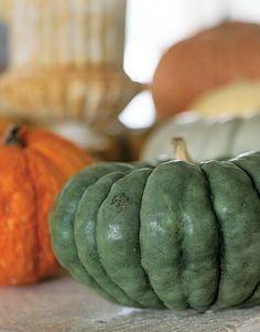 Green Pumpkin #fall #autumn #pumpkin