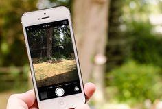 ¿Qué es un Time Lapse y qué tiene que ver con iOS 8? EsferaiPhone