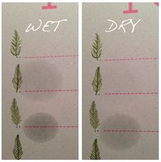 Pure Plant Essence or Diluted Fake?  Find out with this simple test!
