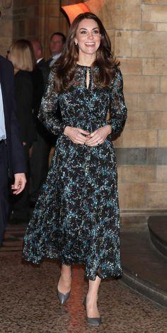 Kate Middleton visite le Musée d'Histoire Naturelle de Londres, le 22 novembre 2016La Duchesse de Camebridge porte une robe de soie signée L.K. Bennett