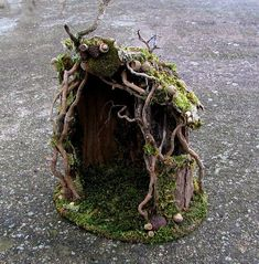 Deep in the woods, under the overhanging banks of a small stream, a strange little house sits nestled at the base of an ancient willow. It seems almost to have grown there, woven about with twining roots, a thick carpet of moss and a crown of acorns, pods and cones. This is a custom order