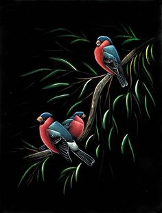 Colorful Birds - Paintings on Velvet (Painting on Velvet Cloth - Unframed) Black Canvas Art, Black Canvas Paintings, Exotic Birds, Colorful Birds, Velvet Painting, Black Paper Drawing, Painted Bunting, Bird Poster, Chalk Art