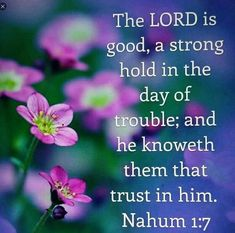 Nahum The LORD is good, a stronghold in the day of trouble; and He knoweth them that trust in Him. Biblical Quotes, Scripture Quotes, Bible Scriptures, Faith Quotes, Scripture Pictures, Spiritual Quotes, The Lord Is Good, Jesus Is Coming, Bible Truth