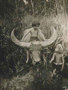 Lah Dah, Nah and Water Buffalo, Siam, 1927, Ernest B. Schoedsack.
